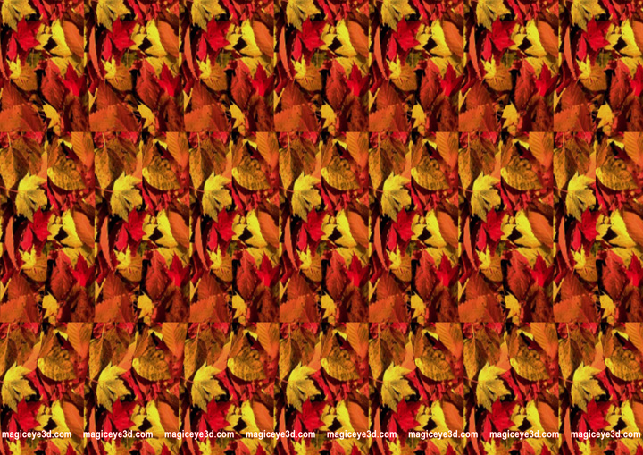 Magic Eye 3d Picture Here Is Some Cool 3d Stereogram Pictures
